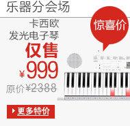 乐器精品5折封顶-2013双十一-亚马逊