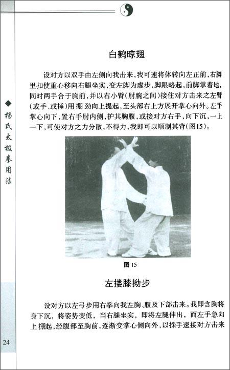 杨氏太极拳用法