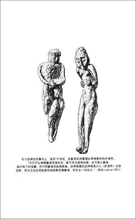 伊索尔德的魔汤:春药的文化史