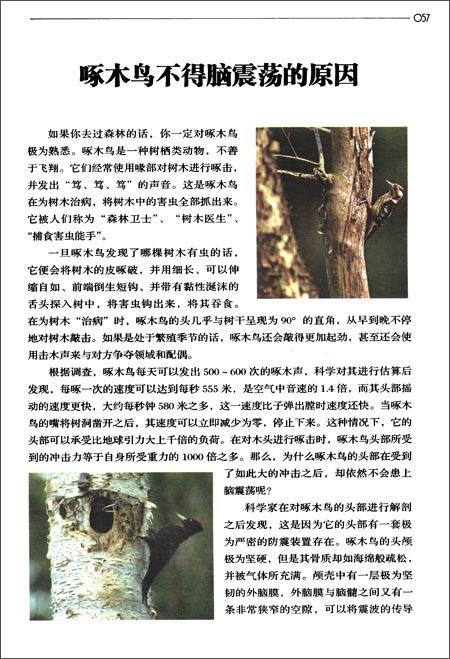 中国青少年科普丛书:物理故事一本通