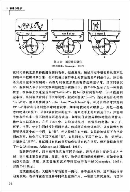 新世纪高等学校教材•心理学基础课系列教材:普通心理学