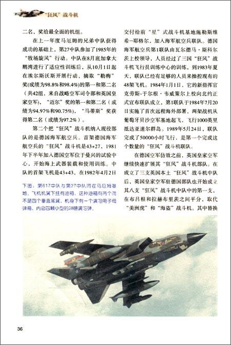 """""""狂风""""战斗机"""