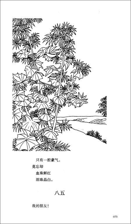 回至 世界文学文库:繁星春水(全本)(插图本) (平装)图片