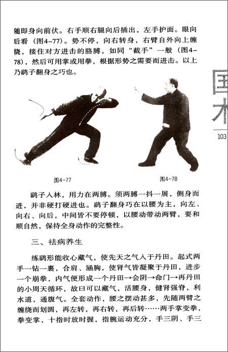 形意拳技击术