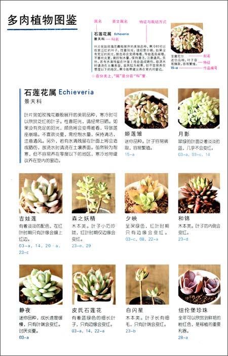 108种懒人植物,放着就可以活!