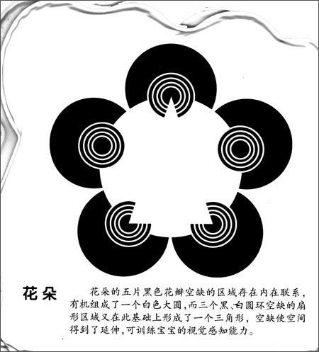 我的第一本早教塑料书视觉激发视图:黑白视觉激发2(适合0-3岁宝宝阅读