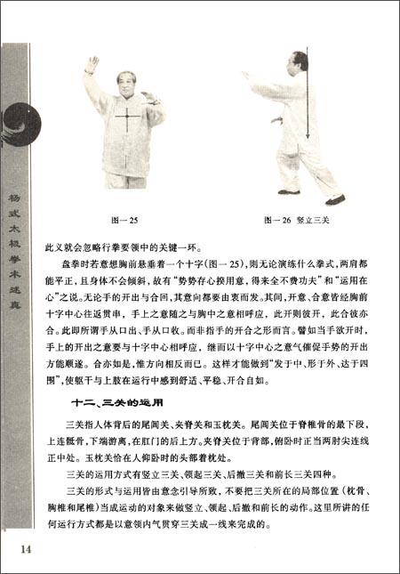杨式太极拳术述真