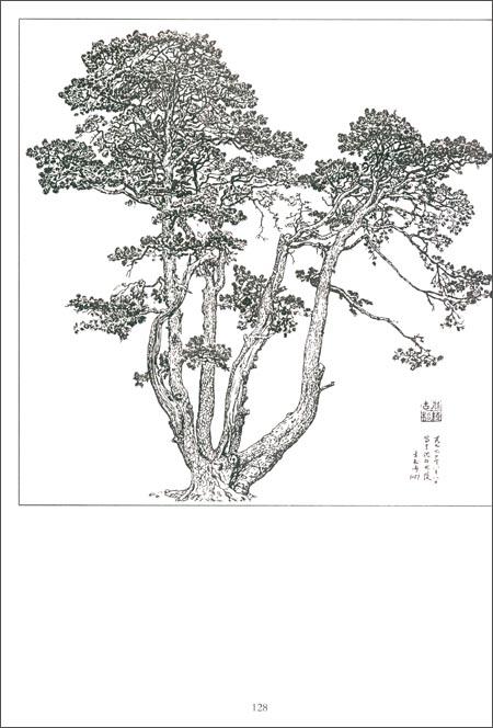 《名家白描画谱:树木》 汪家芳, 康凤桂等【摘要 书评