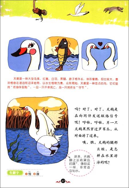 最美童年:动物宝宝成长图画书(儿童启蒙版)(套装共3册)精装–2013年4