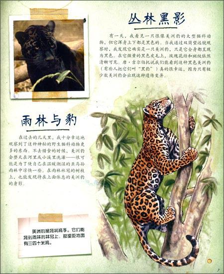 回至 科学探险手记:雨林动物 (精装)