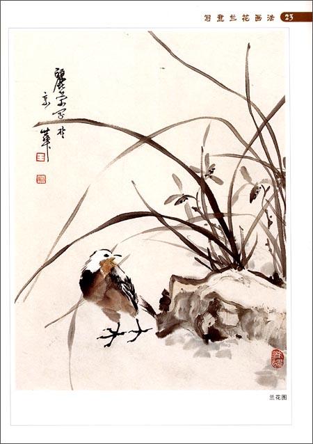 中国画画法入门丛书:写意兰花画法:亚马逊:图书