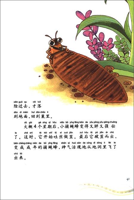一生必读的经典:昆虫记