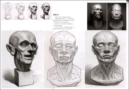 素描写生:石膏五官--眼睛写生步骤及素描技法观