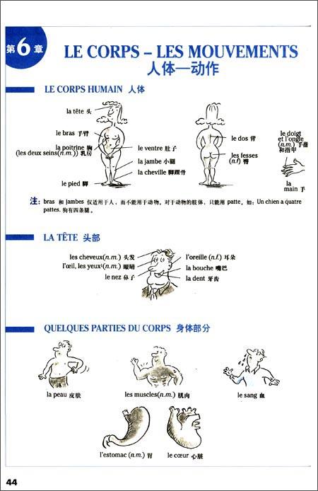 法语词汇渐进