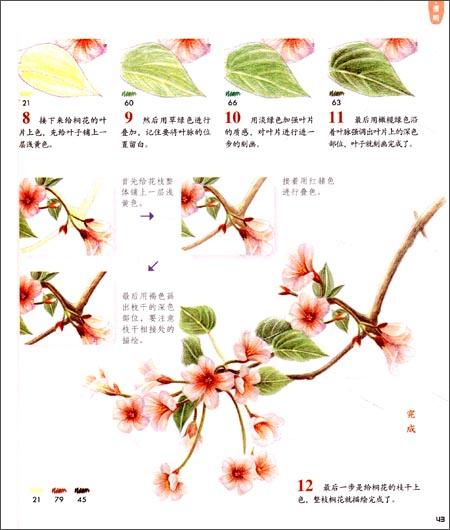 回至 花之绘2:二十四节气花卉的色铅笔图绘 (平装)