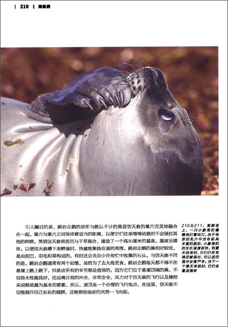 中国国家地理•美丽的地球系列:南极洲