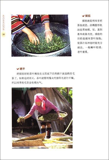 普洱茶名品图鉴