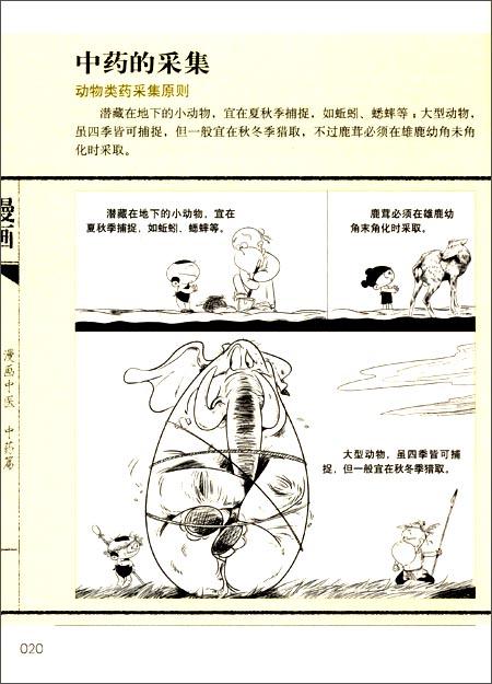 漫画中医:中药篇