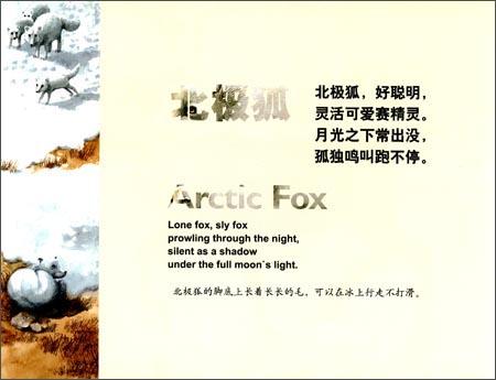 动物童谣:极地动物(中英双语):亚马逊:图书