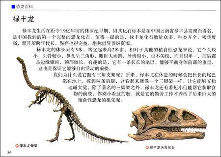 小小图书馆:恐龙百科