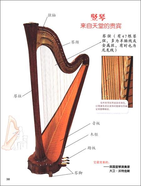 我的第一本乐器书