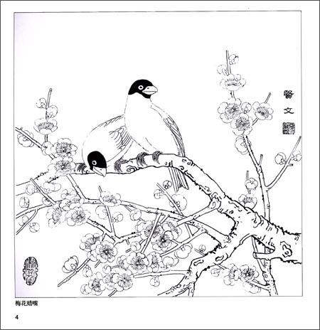 实用白描画稿:春意花卉:亚马逊:图书