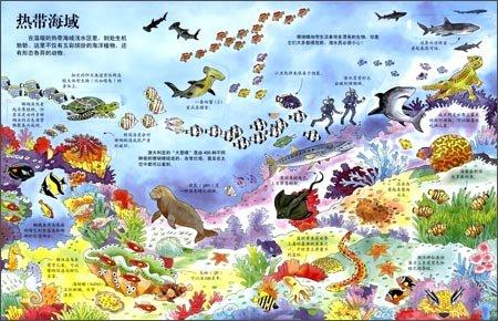 乐乐趣科普翻翻书看里面系列:揭秘海洋