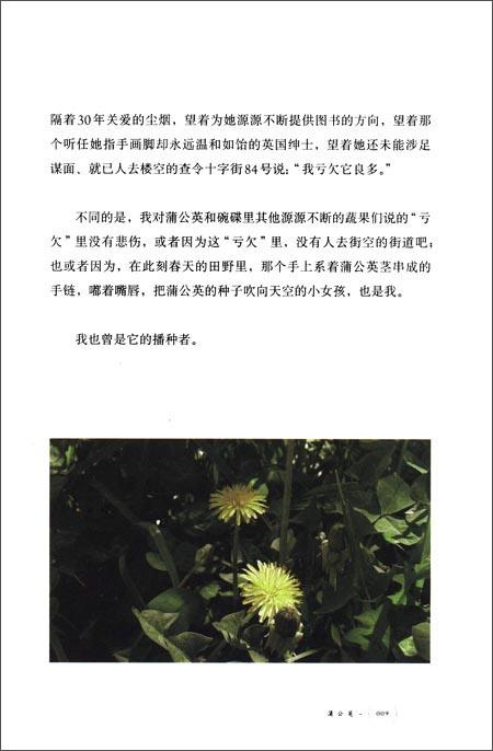 植物记:新疆篇