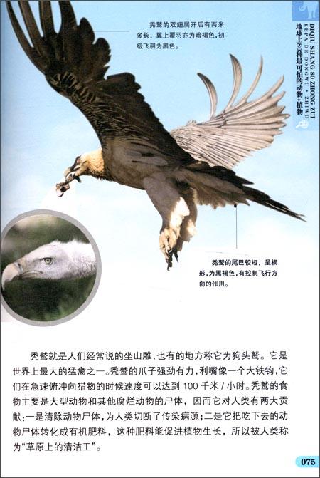 我最爱读的趣味百科书:地球上80种最可怕的动物+植物平装–2012年8月1