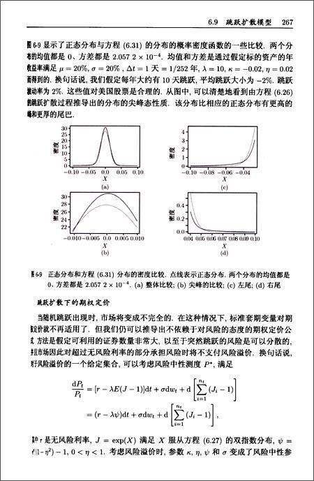 图灵数学•统计学丛书:金融时间序列分析