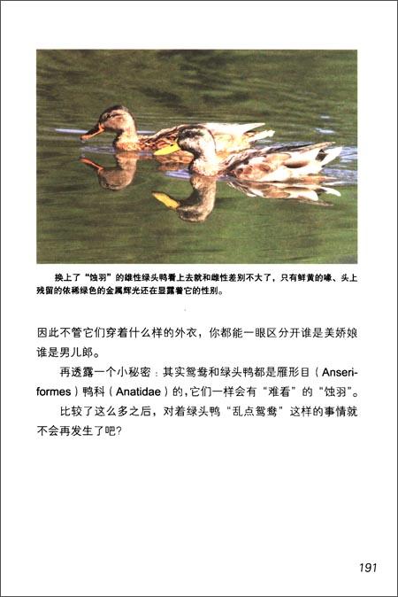 鸟与兽的通俗生活