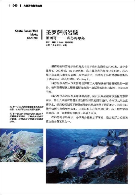 中国国家地理•美丽的地球系列:水下天堂:全球最美的潜水胜地