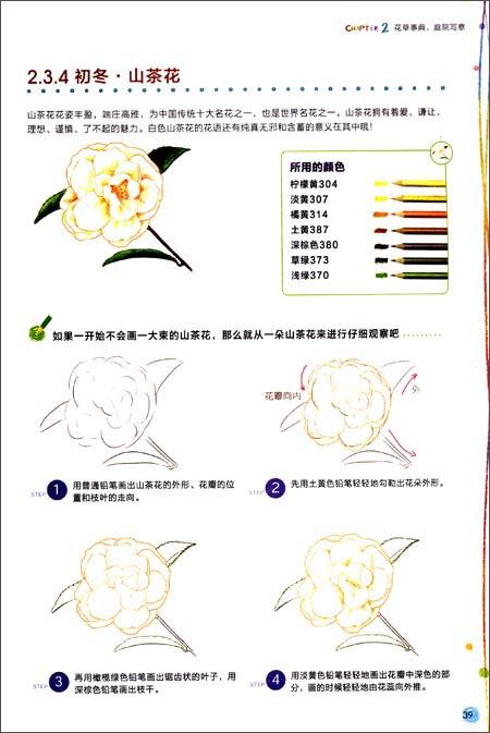 铅笔画桃花画法步骤