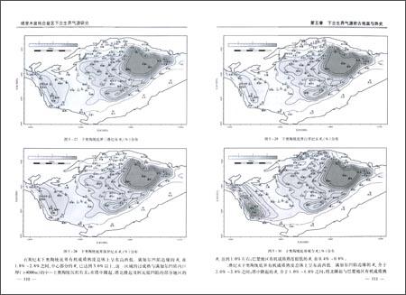塔里木盆地台盆区下古生界气源研究:亚马逊:图书