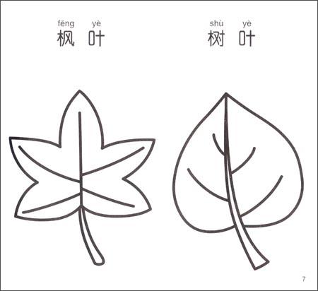 《小手握笔幼儿简笔画:植物》