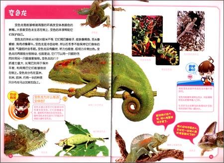 奇趣少儿百科:爬行与两栖动物卷