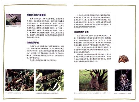 回至 青少年科学探险漫画故事:荒岛求生·达尔文的生物进化之旅 (平装