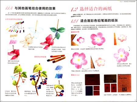 飞乐鸟的色铅笔手绘世界:花卉入门篇:亚马逊:图书