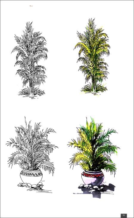手绘教学辅助课稿:景观设计表现