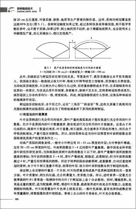 灰白单页背景素材