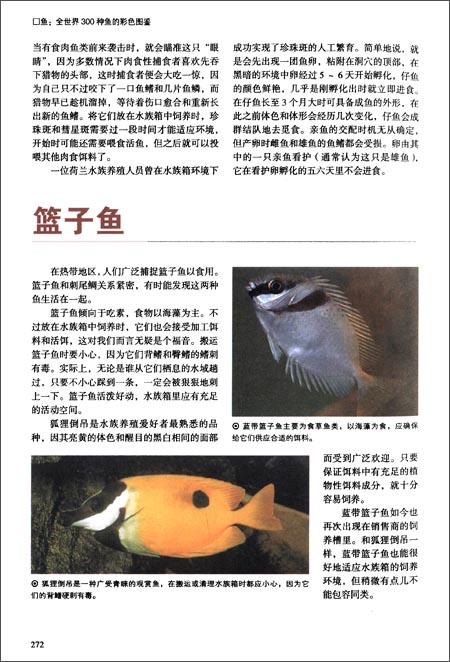 鱼:全世界300种鱼的彩色图鉴