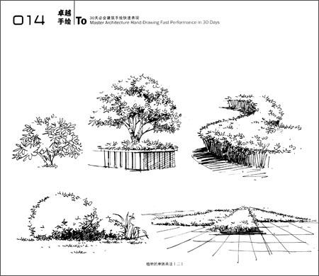 卓越手绘:30天必会建筑手绘快速表现:亚马逊:图书