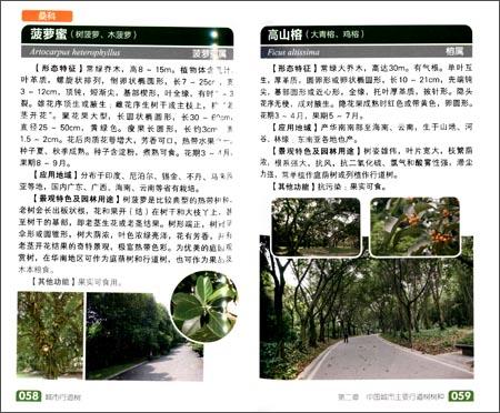 城市行道树:身边树木识别图鉴