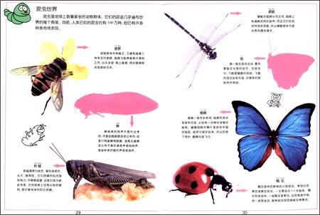 动物海马身体结构