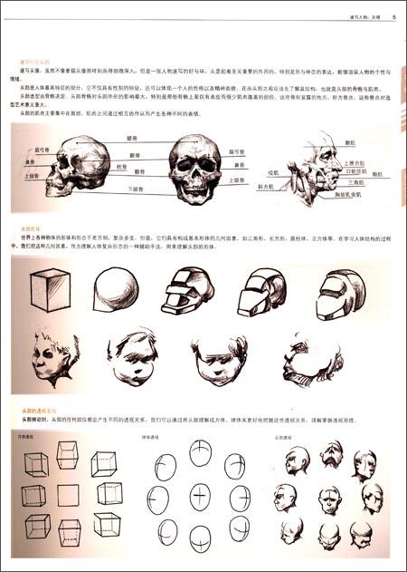 61打蛋蛋-成功教学系列丛书:速写人物(衣褶)/刘雪松