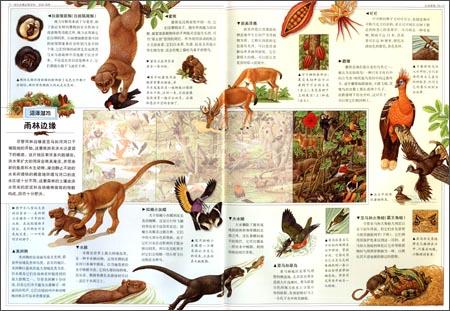 雨林-不一样的全景动物百科 -杰拉德.切舍 (新博
