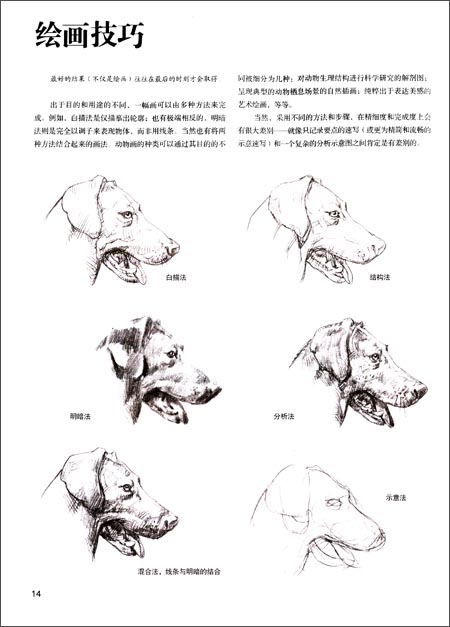 《意大利经典素描训练教程:动物素描表现技法》