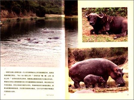 不能不去东非-非洲追踪野生动物行 任宁 9787514318654
