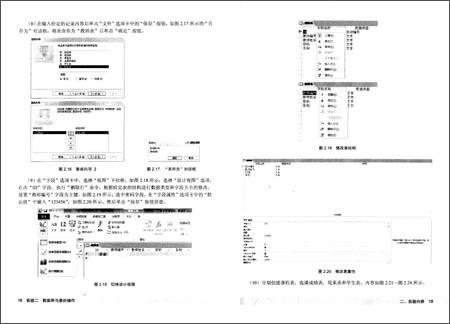 数据库技术应用实践教程 Access 2010
