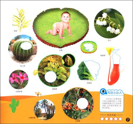 保护地球儿童贴画